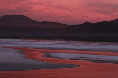 Laguna Colorada_0741
